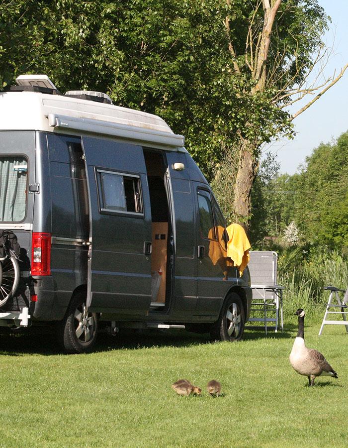 camping dicht bij zee, midden in de natuur, in omgeving van delft, rotterdam en den haag, midden-delfland